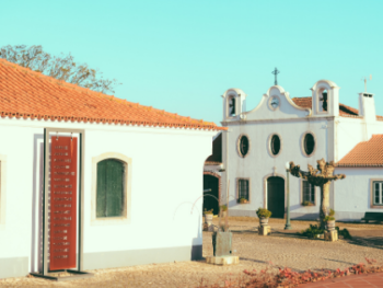 Wine Experiences Tasting Portugal by Wine Tourism